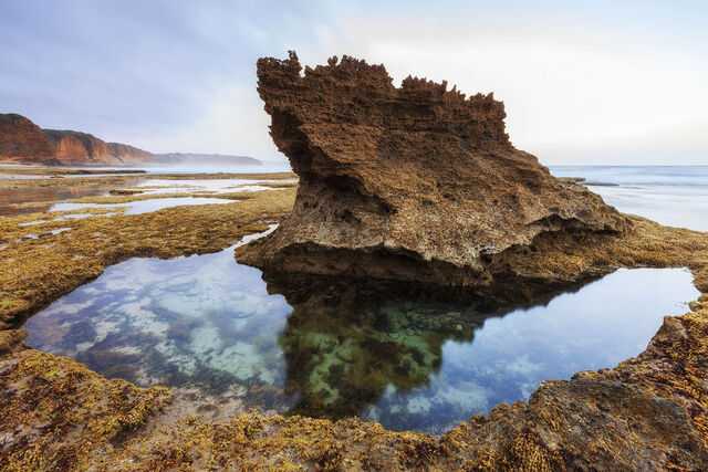 Aireys Inlet 34