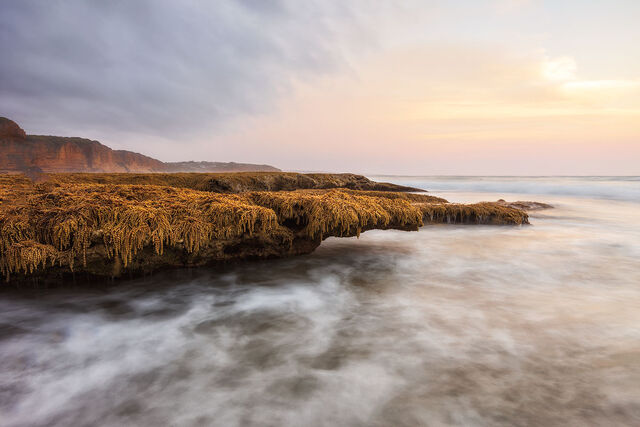 Aireys Inlet 35