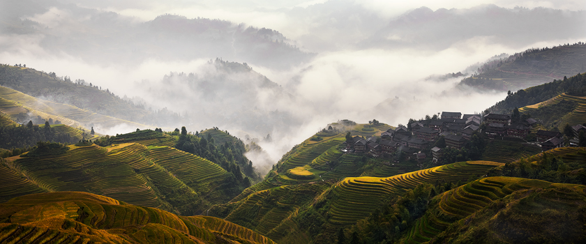 Mist and rice fields, Guilin, China