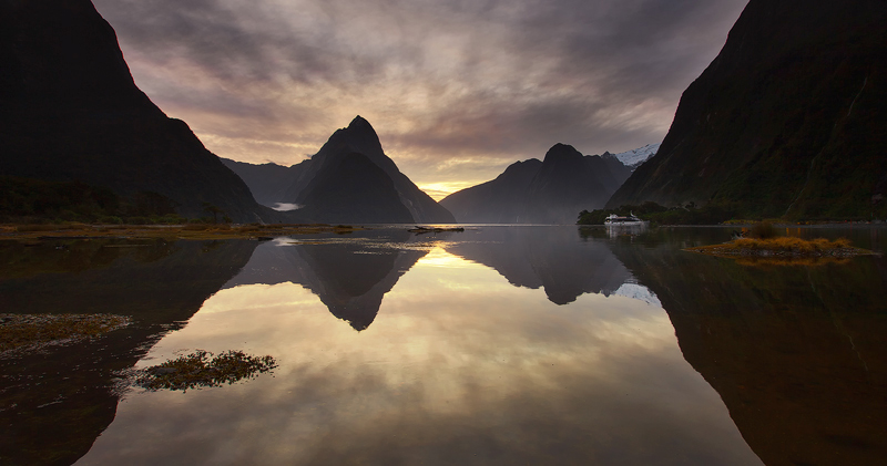 Reflective waters, New Zealand