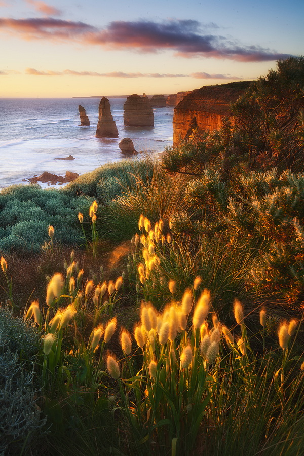Morning light kisses the landscape at the 12 Apostles, Melbourne, Victoria. Photo © Darren J Bennett. All Rights Reserved.